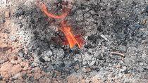 Semburan Api Muncul dari Bekas Sumur Bor di Ladang Warga Sragen