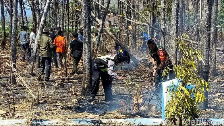 Total 11 Hektare Lahan Perhutani di Ponorogo Terbakar Sejak Juli