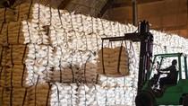 Ekspor Beras ke Arab Saudi Terganjal Administrasi