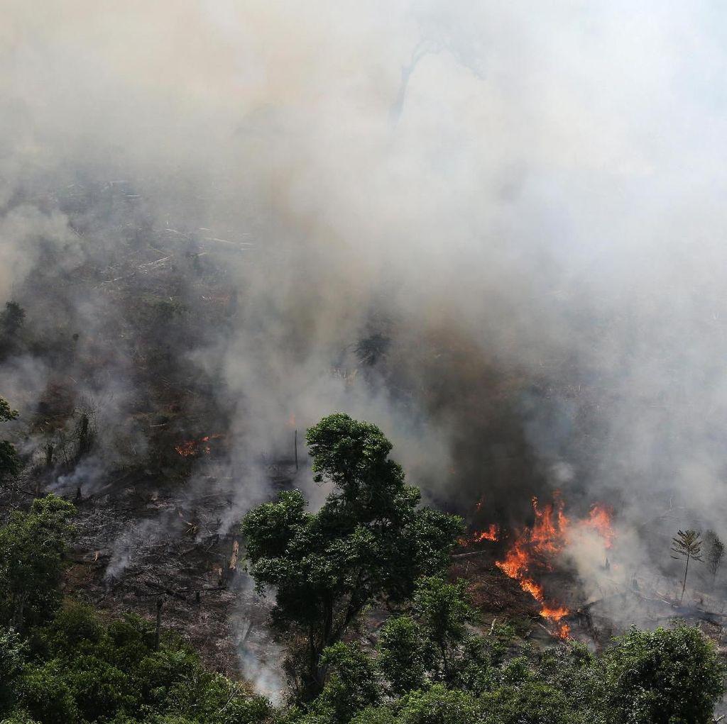 Presiden Brasil Kirim Tentara untuk Padamkan Kebakaran Hutan Amazon