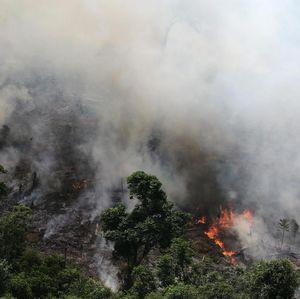 Ronaldo: Selamatkan Amazon, Selamatkan Bumi!