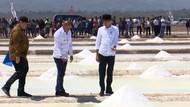 Pastikan Program Berjalan, Jokowi Perdana Panen Garam di Kupang