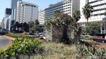 Usai Bambu Getah Getih, Bundaran HI Kini Dihias Taman Bunga