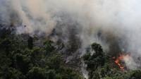 Badan pemerintah mencatat ada 72.843 titik api, jumlah tertinggi sejak pencatatan pada 2013. Sejak Kamis pekan lalu saja, lebih dari 9.500 titik api sudah ditemukan oleh satelit. (Foto: BBC World)