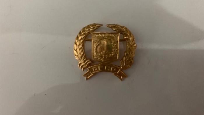 Foto: Pin emas DPRD DKI (Dok. Taufiqurrahman)