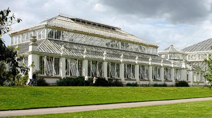 Temperate House di Kew Gardens, London. Foto: iStock