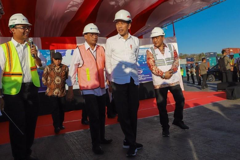 Jokowi Tinjau Aktivitas Kapal Ternak di Pelabuhan Tenau Kupang