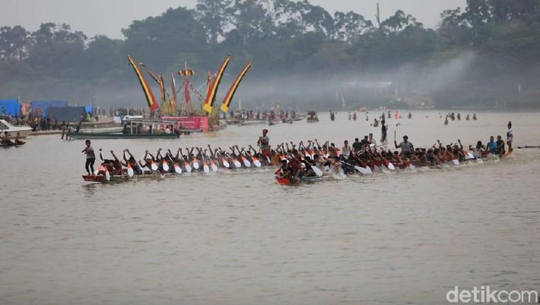 Festival Pacu Jalur di Riau (Chaidir Anwar Tanjung/detikcom)