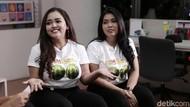 Heboh Clara Duo Semangka Diancam dengan Foto Syur