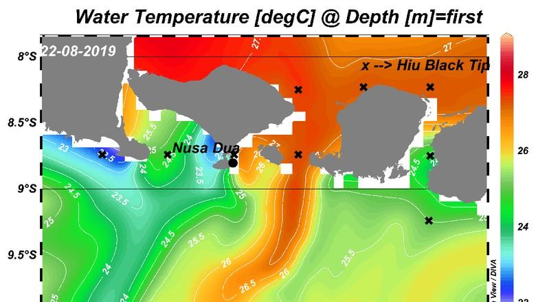 Analisa rute kemunculan hiu blacktip (Pusat Riset Kelautan KKP/Istimewa)