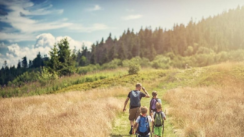 Father with three kids are hiking the grassy path towards gentle sloped hill covered by mixed forest.