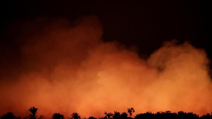 Kebakaran Hutan Amazon (Foto: REUTERS/Ueslei Marcelino)