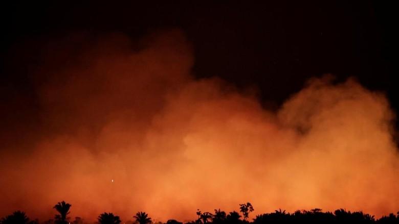 Penampakan Nyala Api Kebakaran Hutan Amazon di Malam Hari