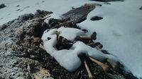 Kisah Danau Kerangka Manusia Paling Misterius di Dunia