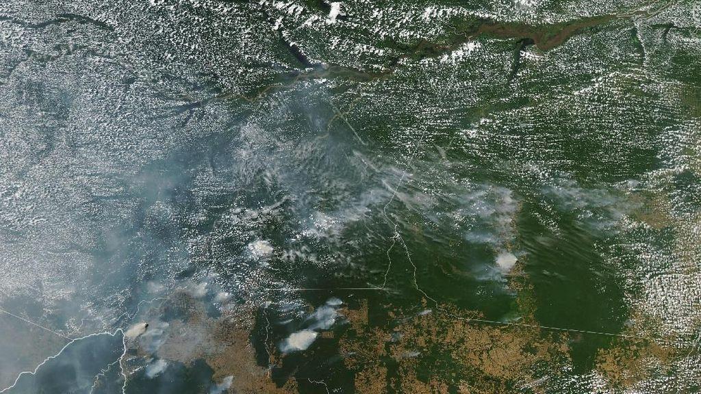 Begini Kebakaran Hutan Amazon Dilihat dari Satelit NASA