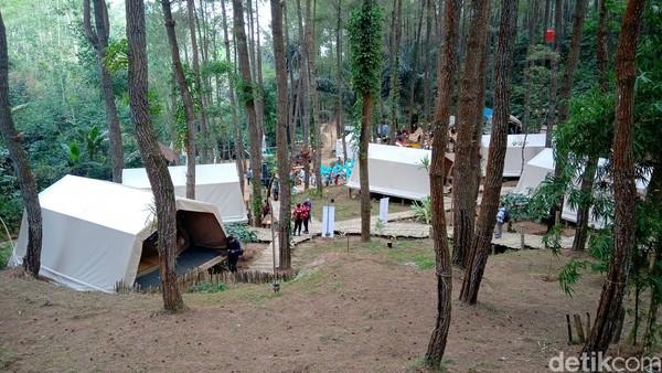 Karena tidak seperti tenda biasa, tarifnya pun tak jauh beda seperti sewa hotel yakni berkisar Rp 350.000 per orang dalam semalam. Harga tersebut sudah termasuk makan 2 kali, snack sembari menikmati minuman. (Rinto Heksantoro/detikcom)
