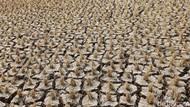 Musim Kemarau, 12 Kecamatan di Sukabumi Rentan Kekeringan