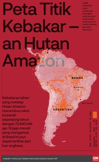 Brasil Kirim Dua Hercules dan Ribuan Tentara ke Amazon