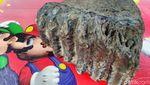 Penampakan Fosil Rahang Gajah Purba di Ciamis