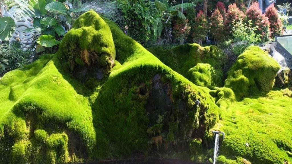 Taman Bunga Selecta dan Kisah Kejayaan Indonesia
