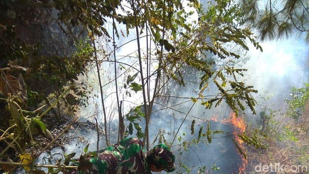 Kebakaran di Gunung Brojo Wonogiri Padam, Warga Waspadai Titik Api Baru