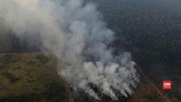 Kebakaran di Hutan Amazon.