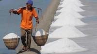 Curhat ke Susi Garam Tak Laku, Petani Madura Coba Ekspor ke Singapura