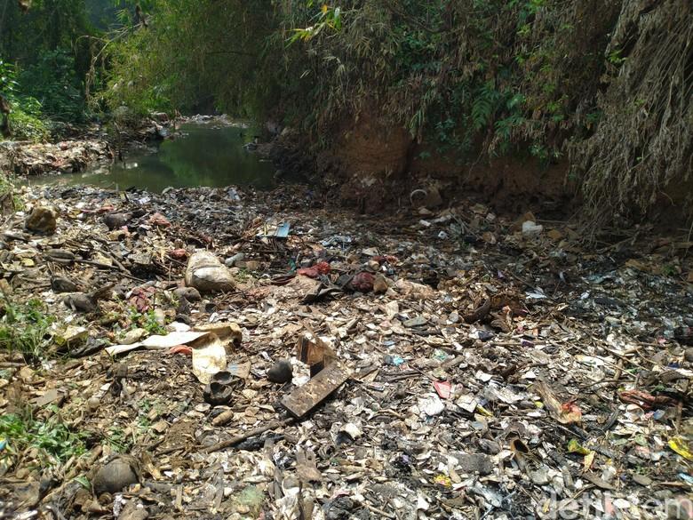 Pembersihan Pulau Sampah di Kalibaru Bogor Terkendala Alat Berat
