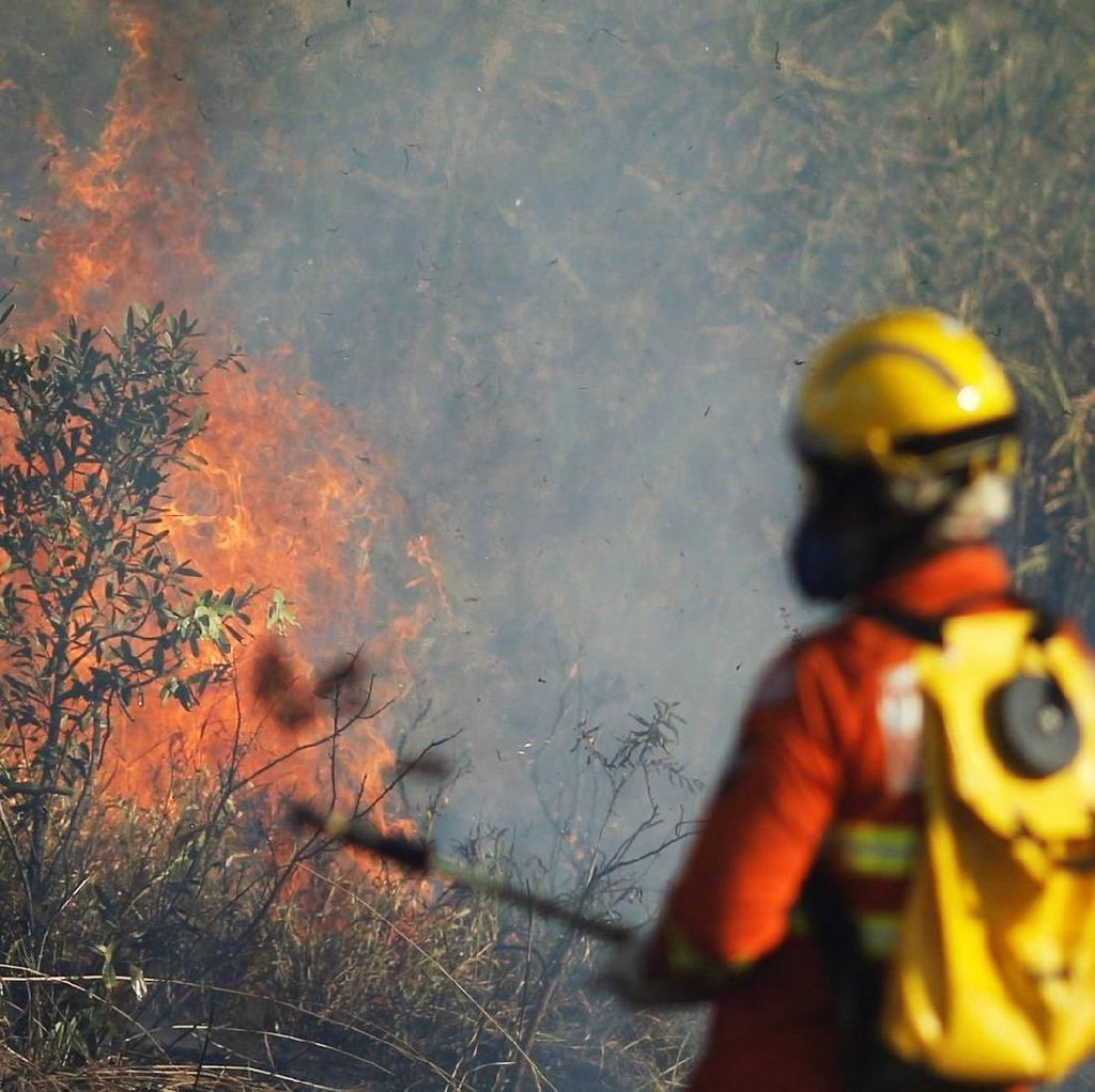 Presiden Prancis Serukan Kebakaran Amazon Dibahas di KTT G7, Brasil Marah