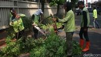 Keberadaan pohon peneduh di sejumlah ruas jalan pun terus dipantau.