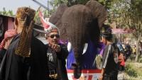 Kreasi gajah yang dibuat oleh warga pun beragam. Ada yang membuat kepala gajah mamoth, gajah pelangi hingga gajah bersayap seperti dalam kisah dongeng.