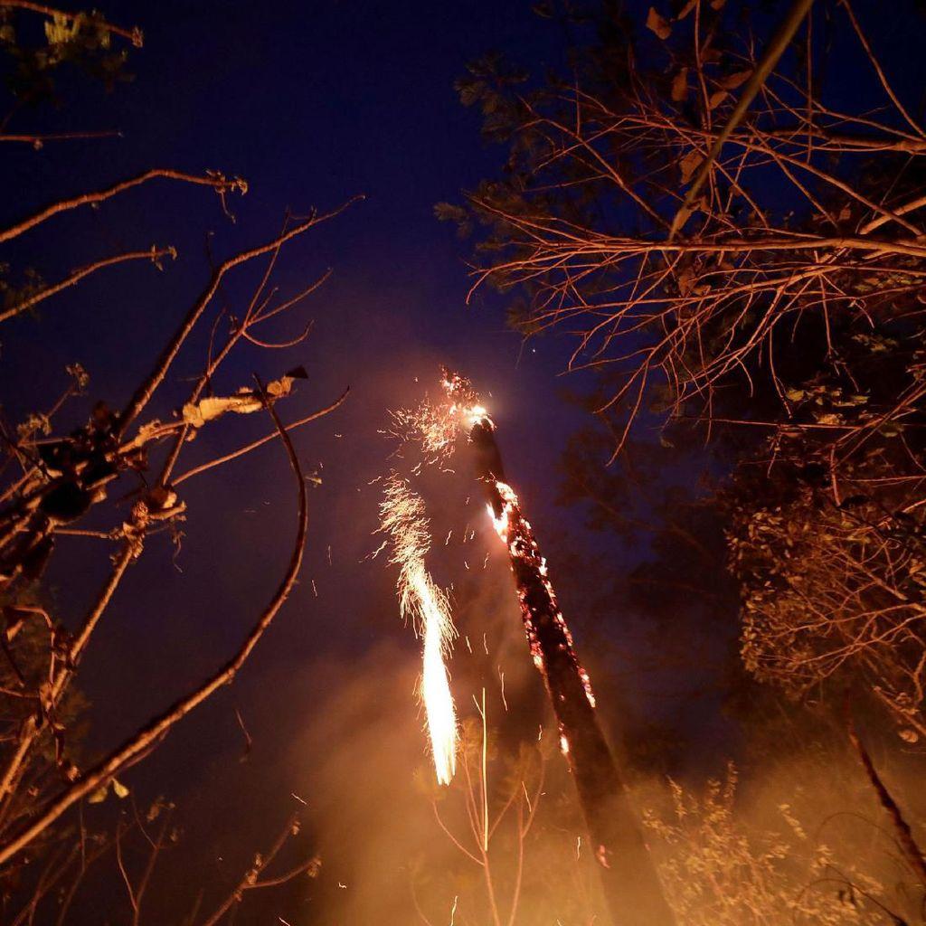 Dikirtik Dunia, Presiden Brasil Kirim Militer Atasi Kebakaran Amazon
