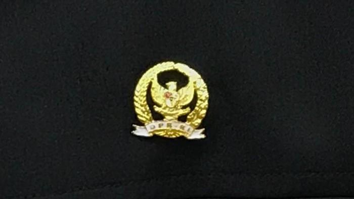 Pin emas DPR RI (Zhacky/detikcom)