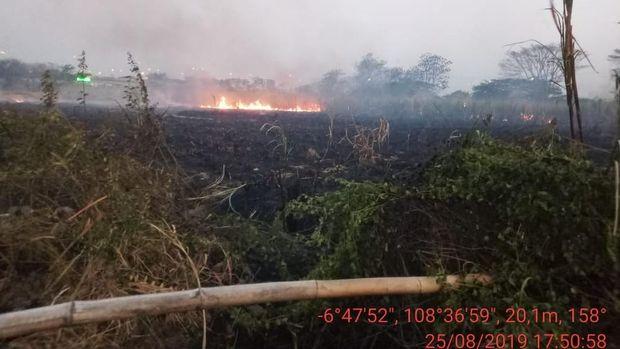 Kebakaran lahan ilalang di pinggir Tol Kanci, Cirebon