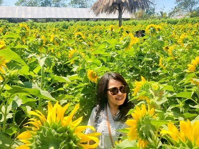 Foto: Taman Bunga Matahari yang Lagi Ngehits di Kupang