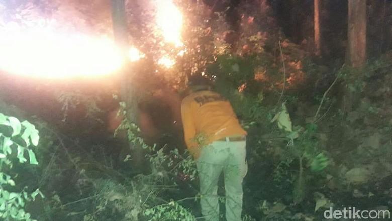 Hutan Dekat Jalur Pantura Pasir Putih Situbondo Terbakar