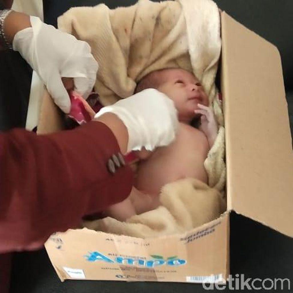Bayi Laki-laki Ditemukan dalam Kardus di Pekarangan Warga Jember