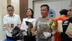 Polres Jaksel Tangkap Bandar Berinisial FA, 1 Kg Ganja Disita