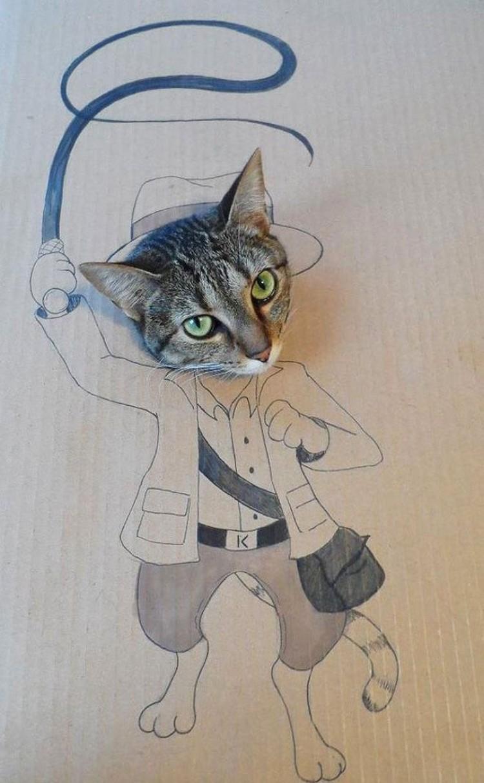 kucing cardboard