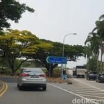 Melihat Jalanan Singapura yang Bebas Macet di Hari Senin