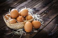 Telur Bisa Dikonsumsi Tanpa Batas Tiap Hari, Ini Alasannya