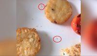 Waduh! Sepupu Pryanka Chopra Temukan Belatung dalam Makanan Pesanannya
