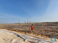 Freeport Sudah Habiskan Rp 2 T Untuk Konstruksi Smelter Gresi