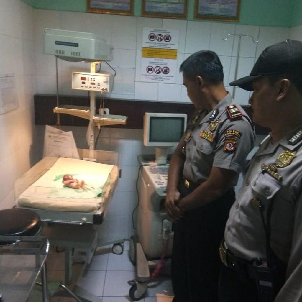 Mayat Bayi Prematur Ditemukan di Dus Pinggir Jalan Sadang-Subang
