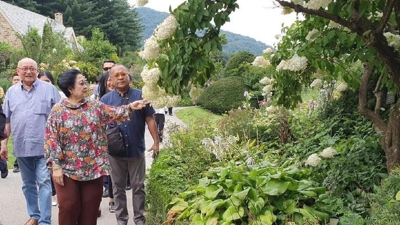 Kunjungi Taman Kota di Korsel, Mega Sarankan RI Perbanyak Kebun Raya