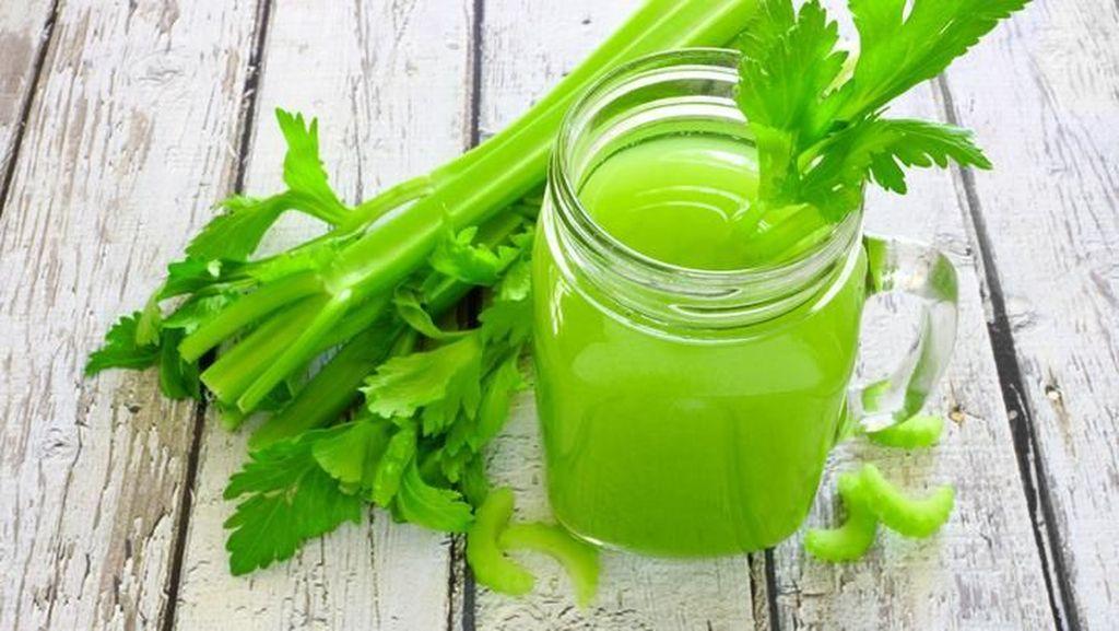 4 Hal Alami yang Sehatkan Ginjal, Minum Rebusan Seledri Salah Satunya