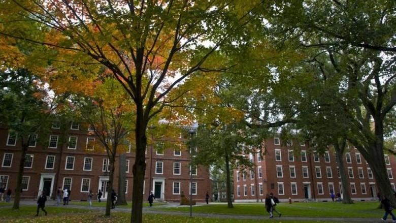 Mahasiswa Harvard Asal Palestina Ditolak Masuk ke AS karena Media Sosial