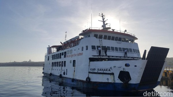 Saat kamu wisata ke Rote menggunakan kapal penyeberangan, kamu akan melihat betapa jernihnya air laut di pelabuhan. Ikan-ikan berenang dengan lincah, serasa di akuarium padahal ada di pelabuhan di Kupang. (Syanti Mustika/detikFinance)