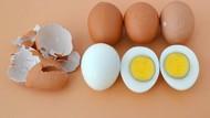 Jangan Panaskan Telur Rebus Utuh Dalam Microwave, Ini Sebabnya