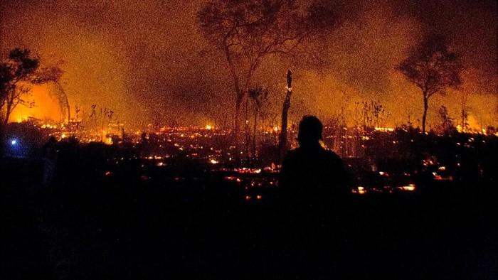 Hutan Amazon terbakar. (Foto: Reuters)